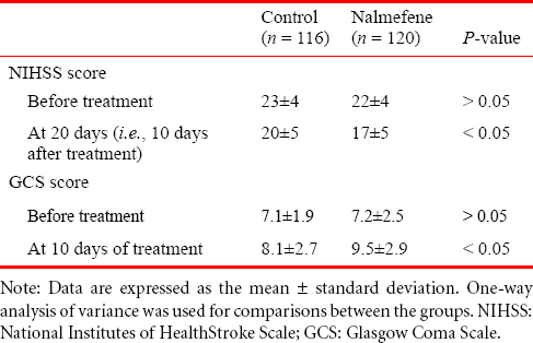 Table 3: Effects of nalmefene on the NIHSS and GCS scores in patients with a large cerebral infarction